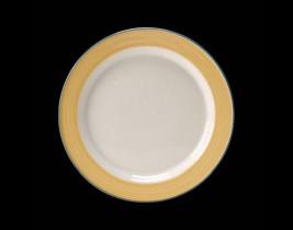 Slimline Plate  15300209