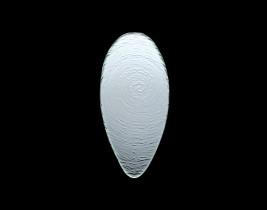 Oval Platter  6512G382
