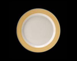 Slimline Plate  15300210