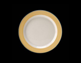 Slimline Plate  15300211